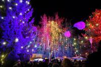 Weisse-Weihnacht-16-bei-Fotoverwendung-bitte-Namensnennung---Foto-Reinhard-rovara-13