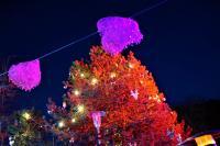 Weisse-Weihnacht-16-bei-Fotoverwendung-bitte-Namensnennung---Foto-Reinhard-rovara-31